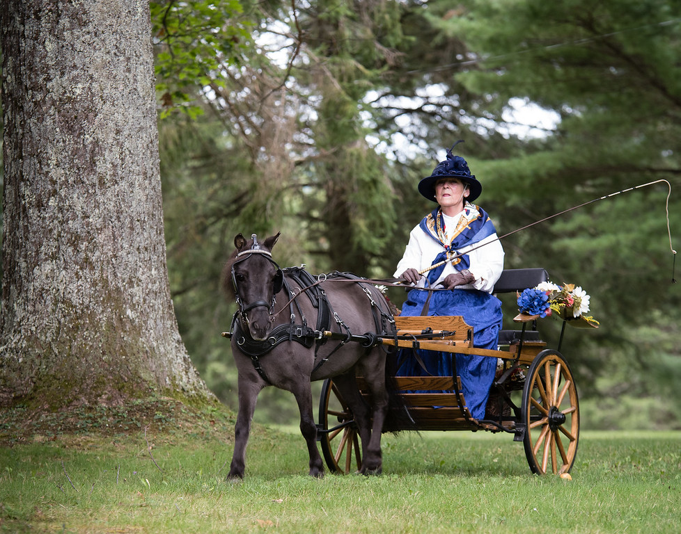 Tub Parade 2018. Diane Bozyczko driving her miniature horse Gage. Photo by Blue Moon Images: www.bluemoonimages.smugmug.com www.facebook.com/danabluemoonimages