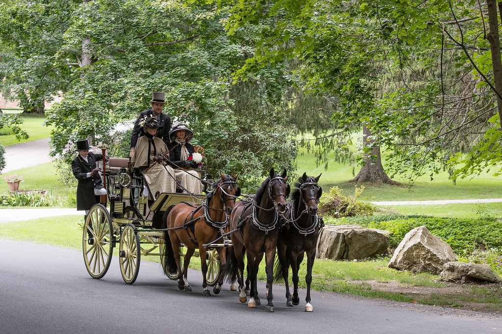 Tub Parade 2018. Mary Stokes Waller driving her 4-in-hand ponies put to a Roof Seat Brake. Photo by Blue Moon Images: www.bluemoonimages.smugmug.com www.facebook.com/danabluemoonimages