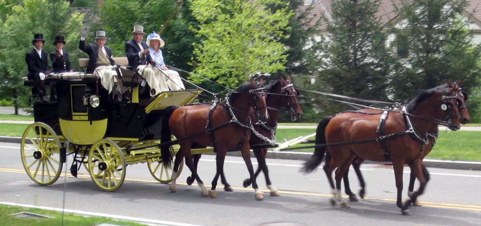 Tub Parade 2015. Harvey Waller driving a four-in-hand team of warmbloods put to a Brewster & Co Park Drag made originally for J. Roosevelt. Photo by Tjasa Sprague.