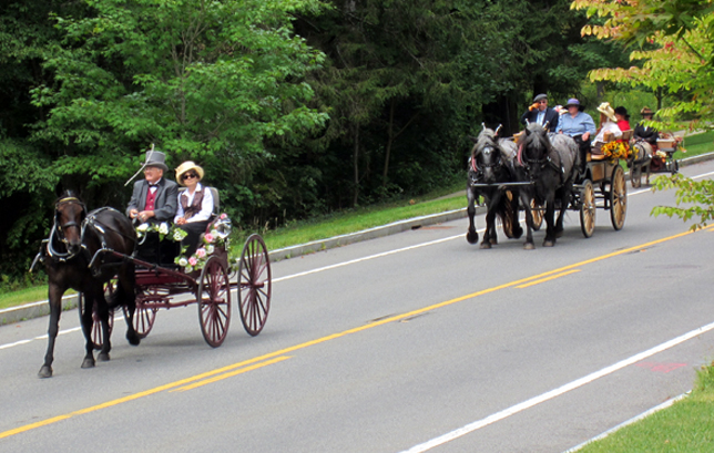 Tub Parade 2015. John Frost driving a Standardbred put to a Gentleman's Spindle Seat Runabout. Photo by Tjasa Sprague.